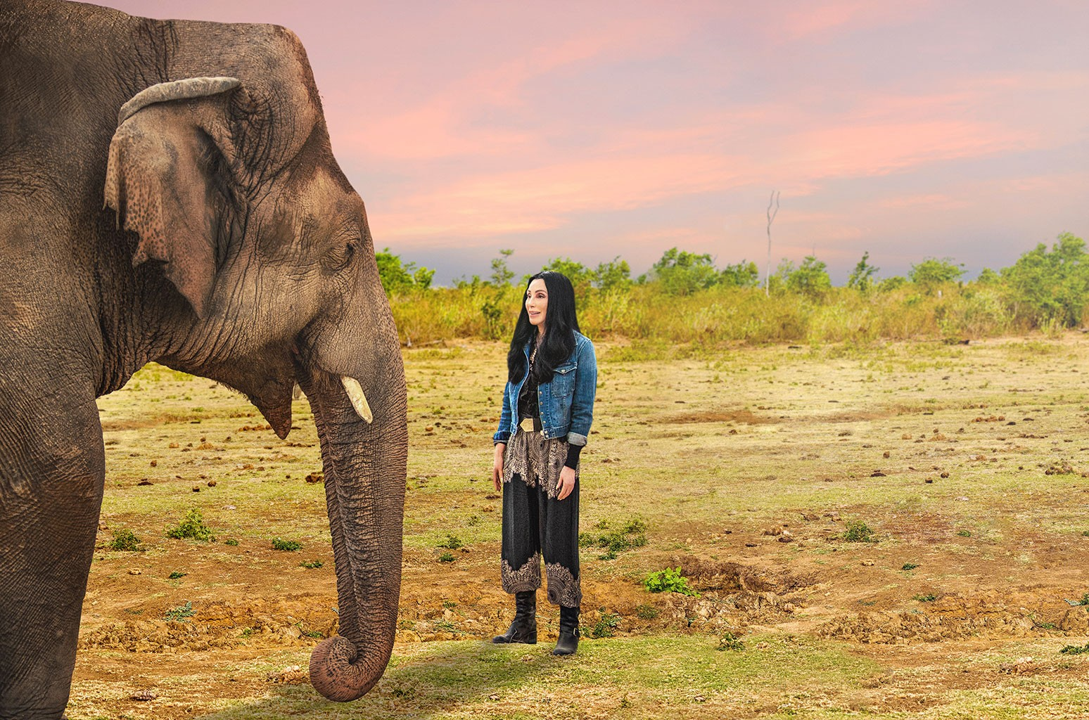 Cher Explains the Fight for Kaavan in 'Cher & The Loneliest Elephant' Trailer: 'He Was Suffering