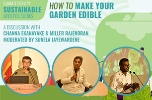 How to make your garden edible