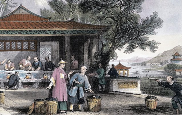 Ancient China: The Birthplace of Tea